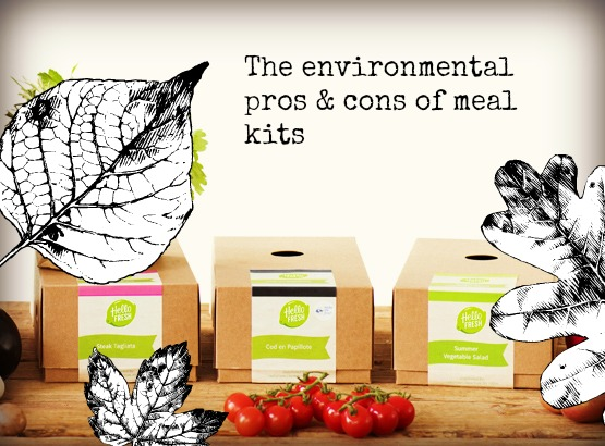The Environmental Pros and Cons of Meal Kits